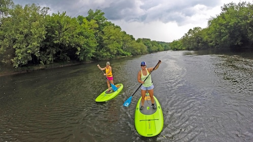 Tourists enjoying the scenic Group on the French Broad River SUP Adventure in North Carolina Central