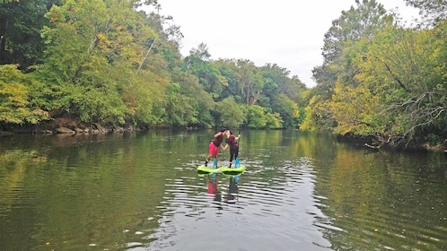 stand up paddle boarding Adventure on the French Broad River