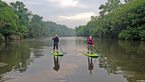 Tourists relaxing on the Group on the French Broad River SUP Adventure in North Carolina Central