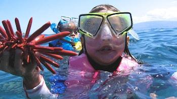Makena & Wailea Kayak Snorkel Explorer