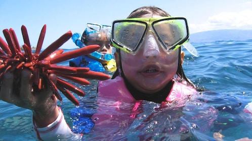 Young girl with life jacket holding sea life found during snorkling adventure.