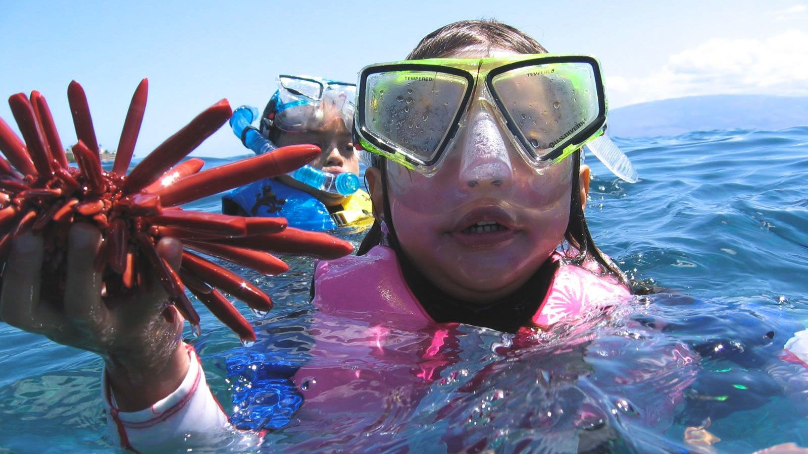 Young girl with life jacket holding sea life found during snorkeling adventure in Maui