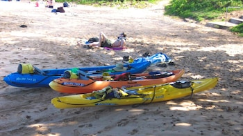 Turtle Town Eco Adventure - guided kayak and snorkel tour