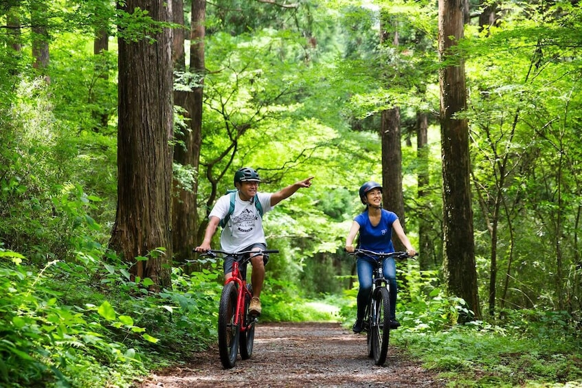 Mountain Biking Tour in the Woods of Hakone & Lake Ashinoko