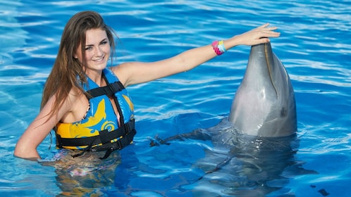 woman petting a dolphin's beak