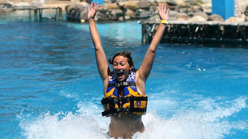 A woman holds her arms up in a Dolphin pool
