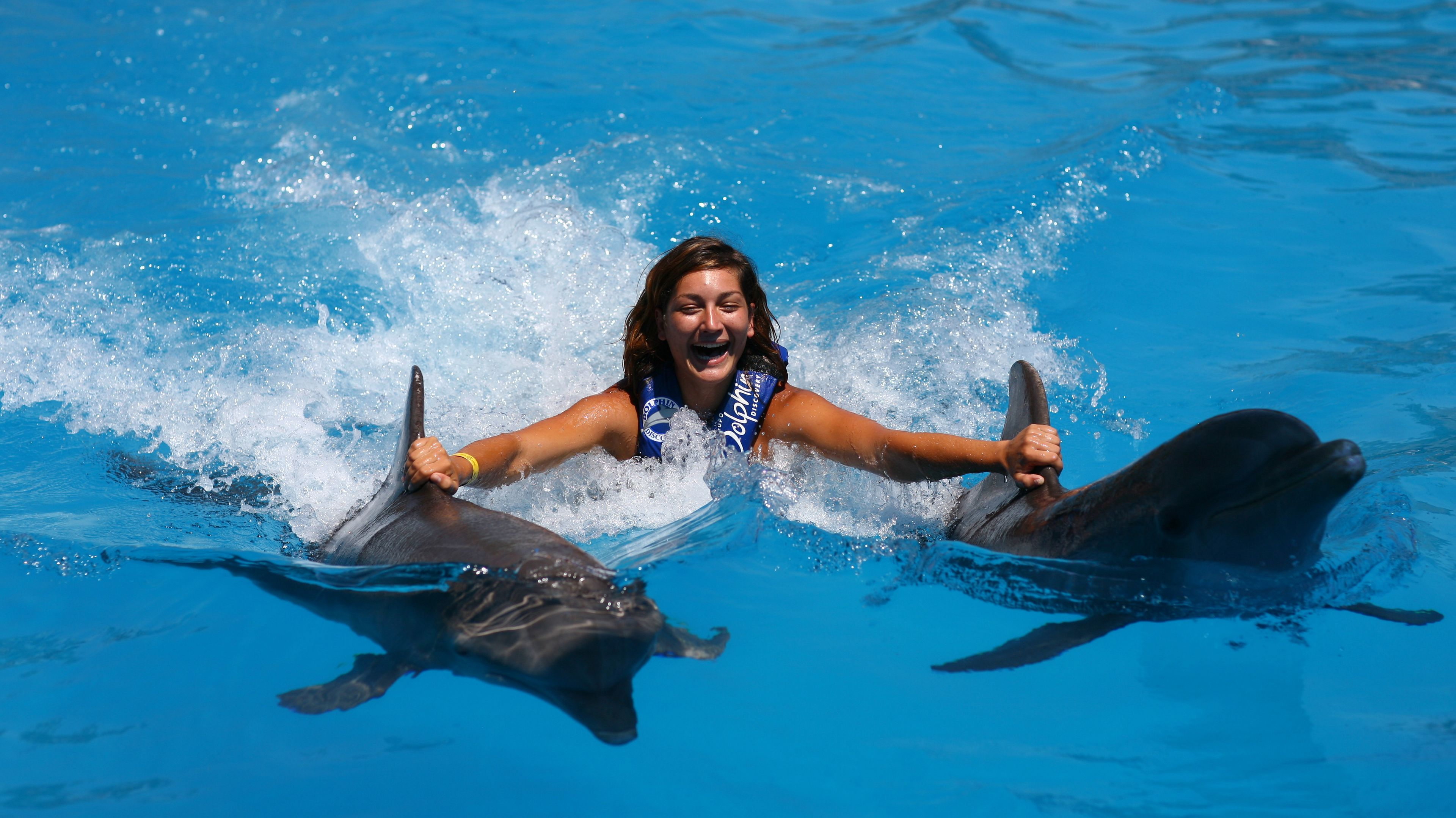 Woman holds on to two dolphins in a pool