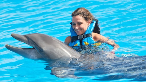 Woman swims with dolphin at Dolphin Discovery Cayman