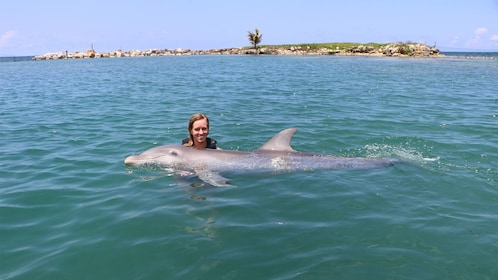 Woman swims with dolphin on the Dolphin Swim Adventure in Montego Bay