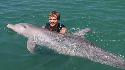 Man swims with dolphin on the Dolphin Swim Adventure in Montego Bay