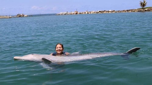 Sunny day on the Dolphin Swim Adventure in Montego Bay