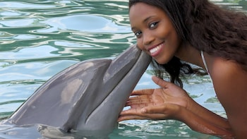 Dolphin Encounter + Dunns River Fall Admission