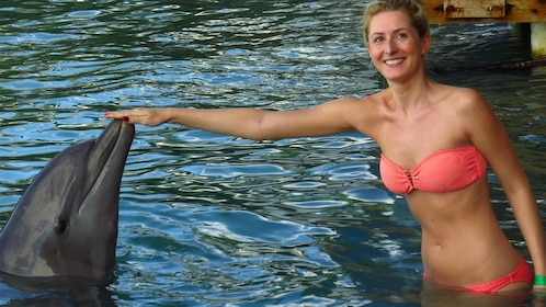 Woman in bikini touches dolphin on nose during dolphin encounter in Ochos Rios