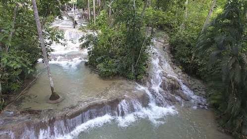Dolphin Swim Adventure + Dunns River Fall Admission