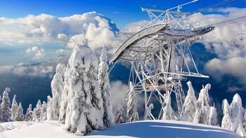 Private Capilano Suspension Bridge & Grouse Mountain Tour