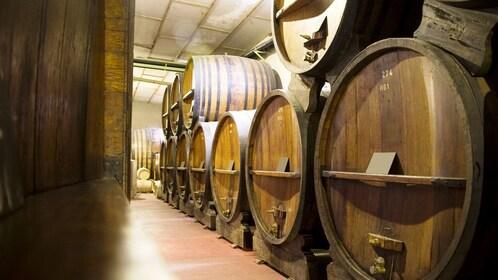 wine barrels in the cellar in Washington
