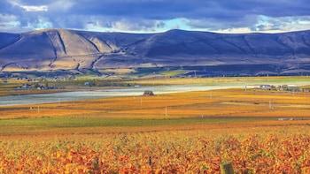 Yakima & Rattlesnake Hills Wine Tasting Day Tour
