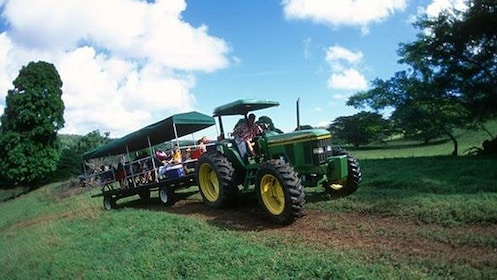 man in tractor pulling guests on trailer in Kauai