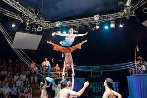 การเข้าชมการแสดง Phare คณะละครสัตว์กัมพูชา
