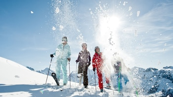 Swiss Ski Experience with Lift Ticket & Lesson from Lucerne