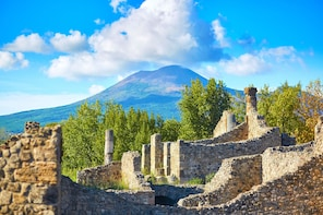 Pompeii & Vesuvius: Small group tour with tickets included