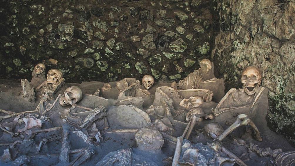 Apri foto 2 di 5. Several petrified human bones in Herculaneum.