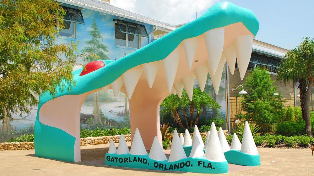 Screamin' Gator Zipline with Gatorland Admission