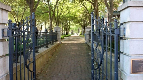 Gated entrance to a tree-lined path in Charleston
