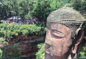 Private Tour to Chengdu Panda Base and Leshan Giant Buddha