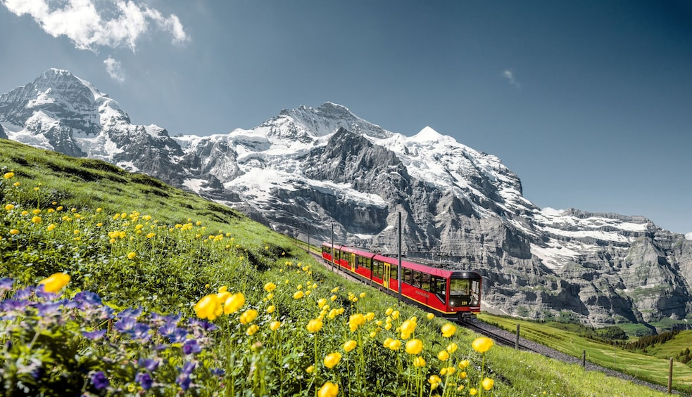 Show item 5 of 8. Eiger & Alpine Glaciers Full-Day Tour from Lucerne