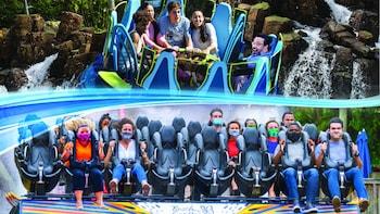 Boletos para el parque temático de Busch Gardens Tampa