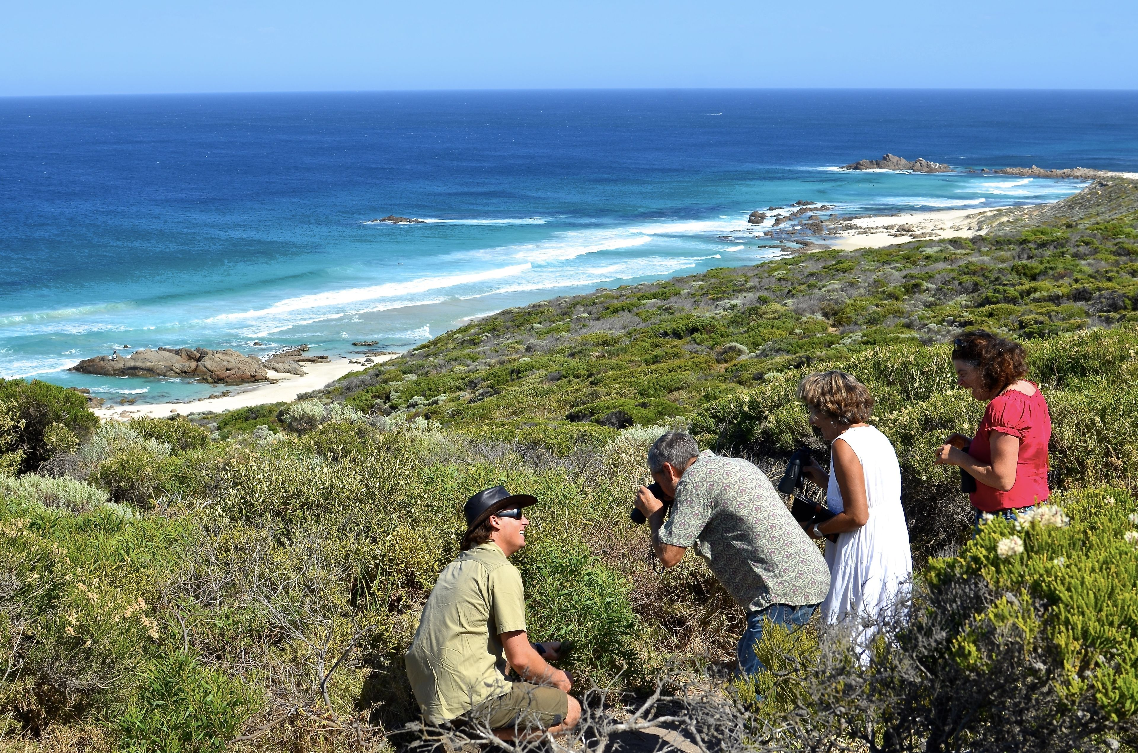 Coastal Sights & Wildlife Half-Day Eco Tour from Busselton or Dunsborough