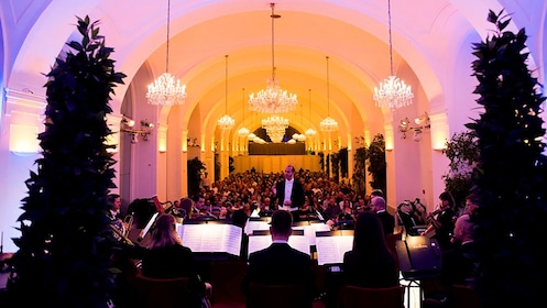 Symphonic performance in Vienna