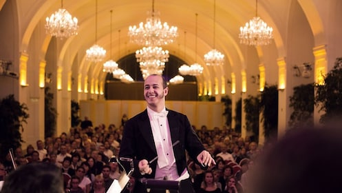 Conductor facing orchestra in concert