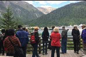 Juneau Highlights and Mendenhall Glacier Tour