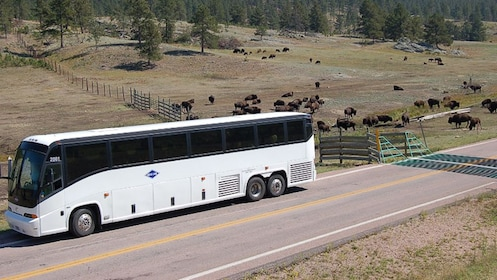 Coach bus parked on side of road in South Dakota