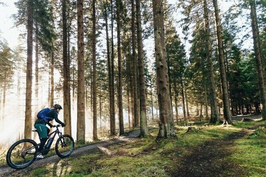 Guided E-Bike Tours in Dorset