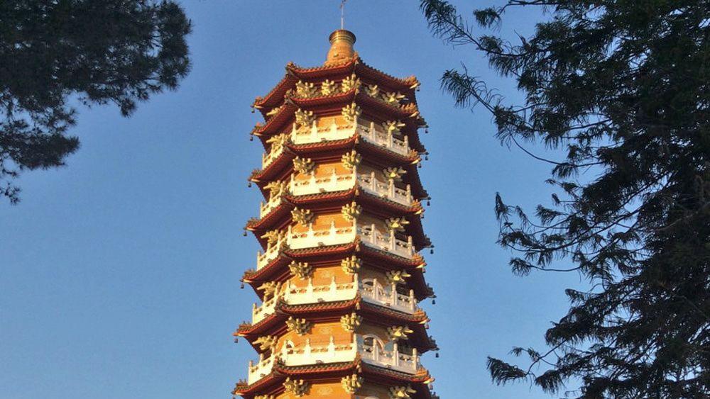 pagoda tower viewed through trees