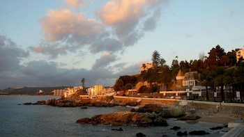 Viña del Mar, Reñaca & Concón Half-Day Tour