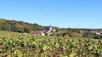 Private Full-Day Champagne Region Tour with Tastings