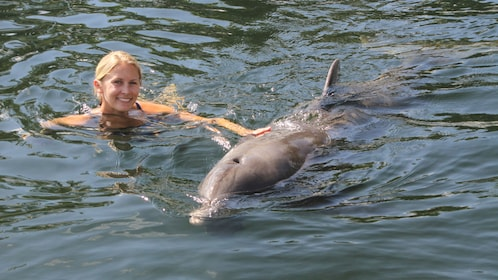 Woman swimming next to dolphin in Florida Keys