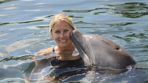 Woman smiles as dolphins touches her face in Florida Keys
