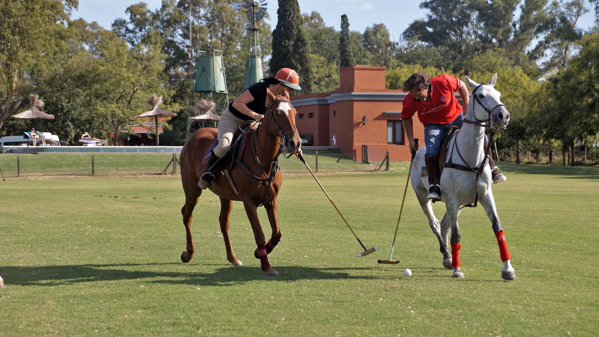 Several people on horses with polo sticks