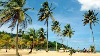 Trip to Maracas Beach by the North Coast Road