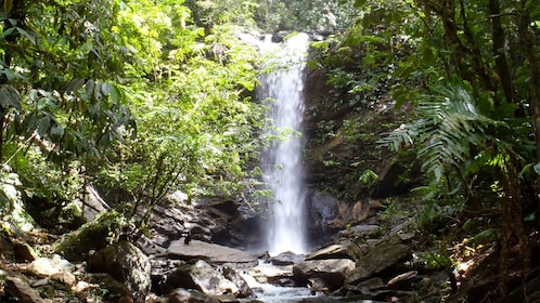 Waterfall in Trinidad and Tobago