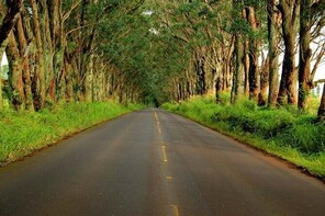 Ultimate Self-Guided Audio Driving Tour of Kauai (Na Pali, Waimea), Hawaii