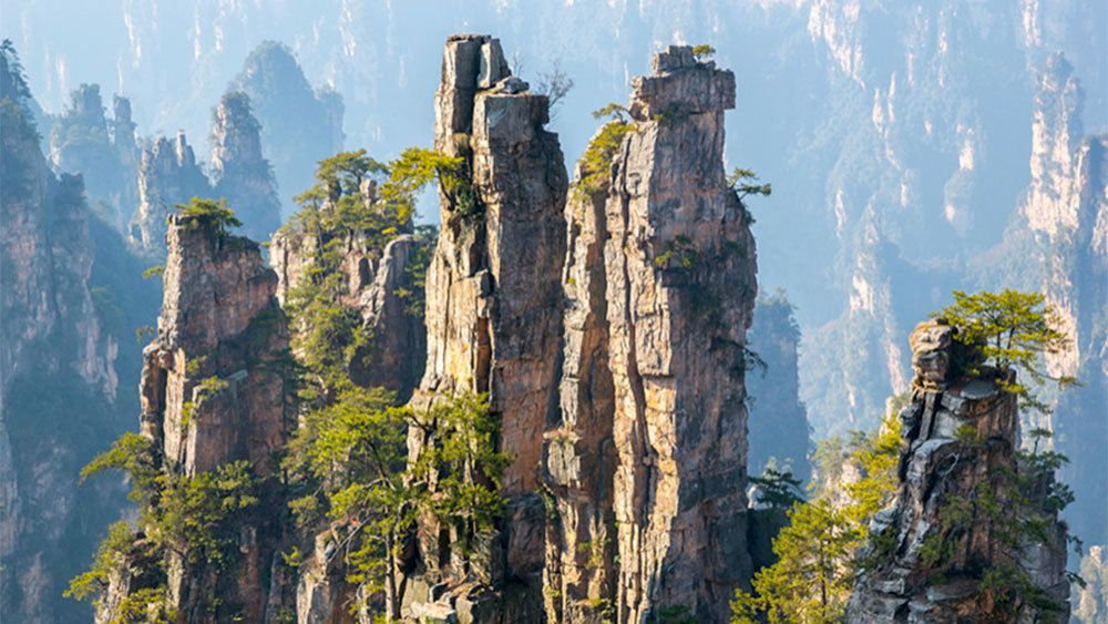 Private Zhangjiajie National Forest Park Discovery Tour