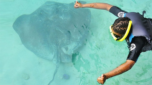 Tourist viewing a Stingray in the Grand Bahamas, Out Islands