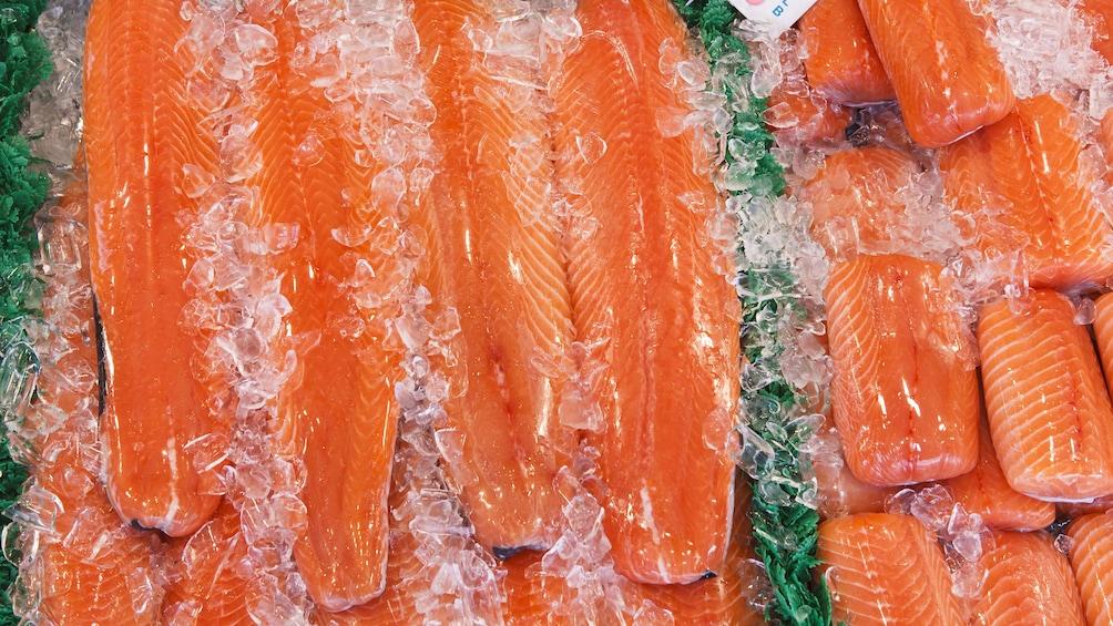 fresh salmon filets