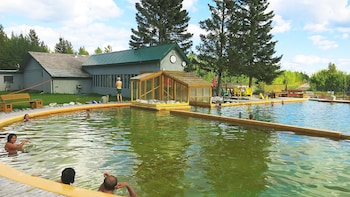 Half-Day Wildlife & Hot Springs Tour